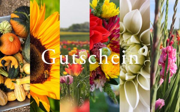 Tacke's Blumenfelder - Gutscheinkarte